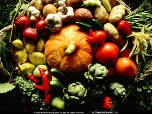 autumn-produce-533154-sw