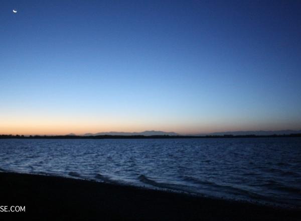 nz south island lake ellesmere nzmuse